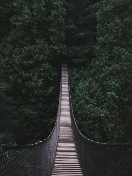 Photo d'un pont suspendu en bois dans la forêt il y a beaucoup d'arbres autour du pont