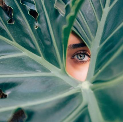 Photo d'un oeil d'une femme de couleur vert qui est caché dérrière une feuille de monstera
