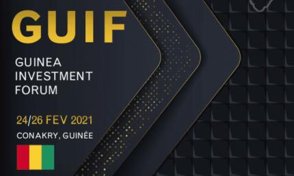 VisuelVisuel du Guinea Investment Forum, participation de notre expert onepoint