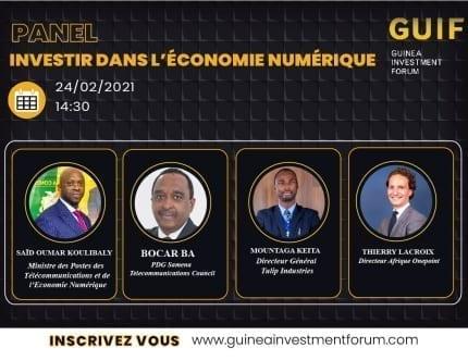Visuel du Panel Guinea Investment Forum, expert onepoint